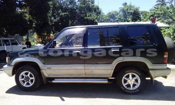 Buy Used Isuzu Trooper Other Car in Ohonua in Eua