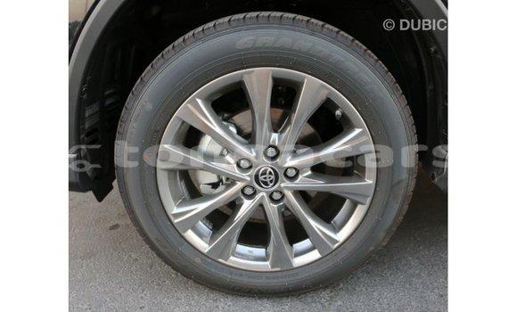 Buy Import Toyota RAV4 Black Car in Import - Dubai in Eua