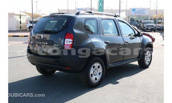 Buy Import Renault Duster Black Car in Import - Dubai in Eua