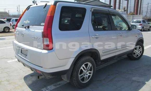 Buy Used Honda CRV Other Car in Nuku'alofa in Tongatapu