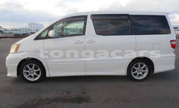 Buy Used Toyota Alphard Other Car in Mu'a in Tongatapu