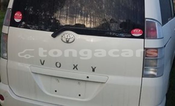 Buy Used Toyota Voxy Other Car in Neiafu in Vava'u