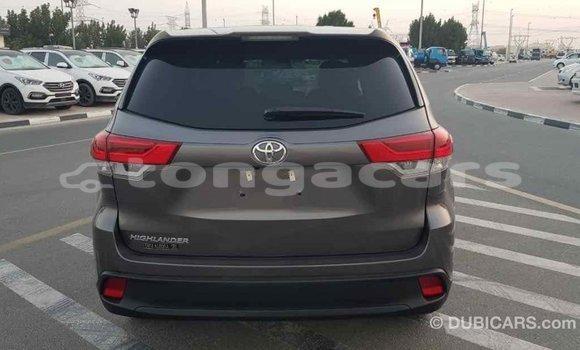 Buy Import Toyota Highlander Other Car in Import - Dubai in Eua