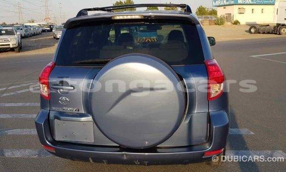 Buy Import Toyota RAV4 Blue Car in Import - Dubai in Eua