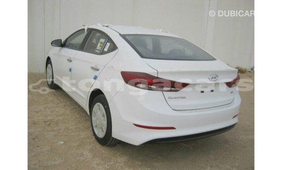 Buy Import Hyundai Elantra White Car in Import - Dubai in Eua