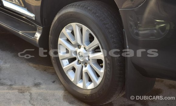 Buy Import Toyota Prado Other Car in Import - Dubai in Eua