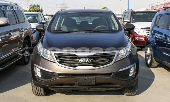 Buy Import Kia Sportage Brown Car in Import - Dubai in Eua