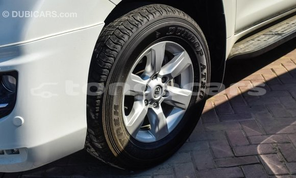 Buy Import Toyota Prado White Car in Import - Dubai in Eua