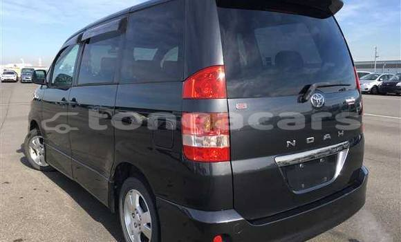 Buy Used Toyota Noah Other Car in Haveloloto in Tongatapu