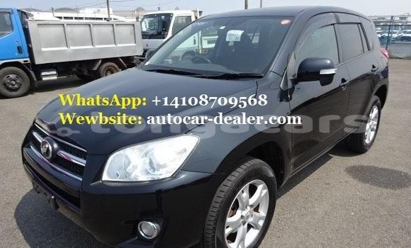 Buy Used Toyota RAV 4 Black Car in Nuku'alofa in Tongatapu