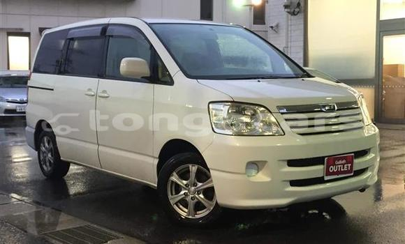Buy Used Toyota Noah Other Car in Fua'amotu in Tongatapu